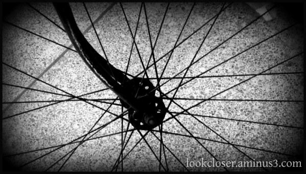 bike spokes holga bw terrazzo