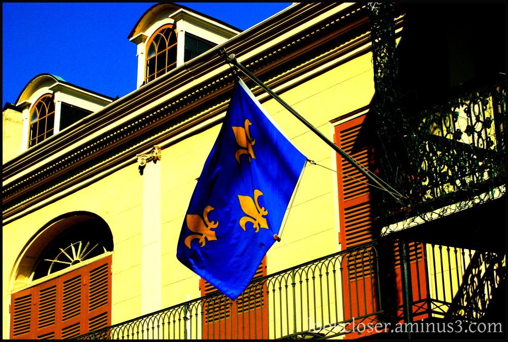 blue flag gold fleurdilis NOLA