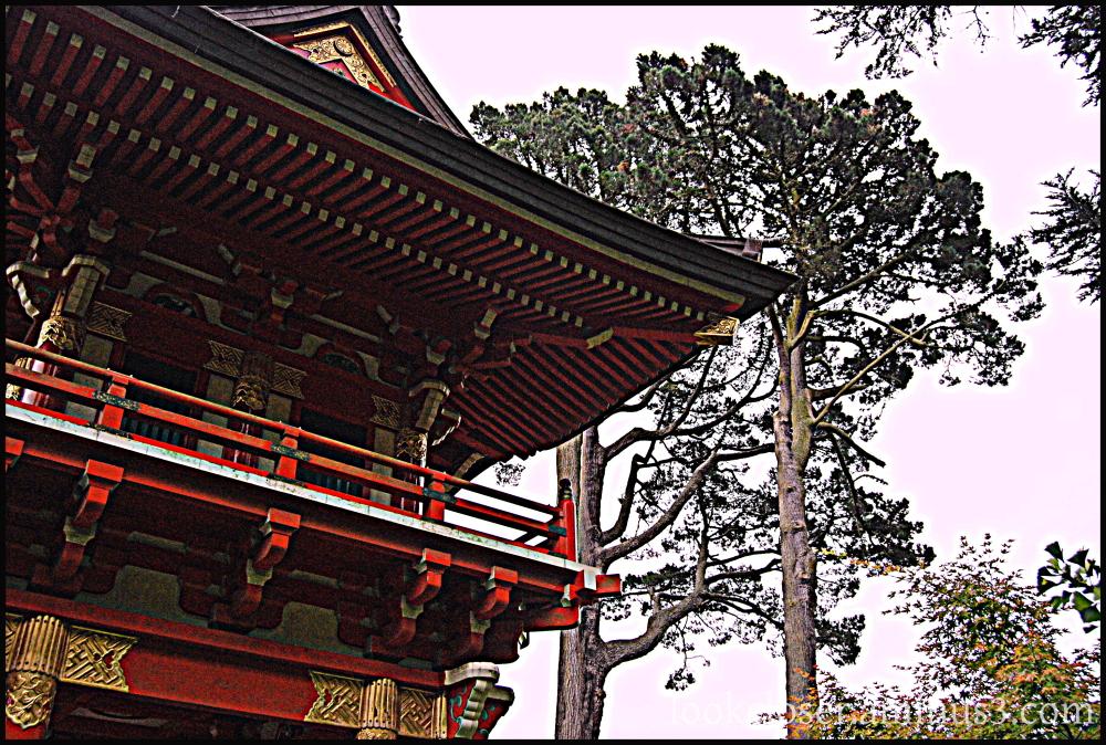 SF Japanese Garden hdr