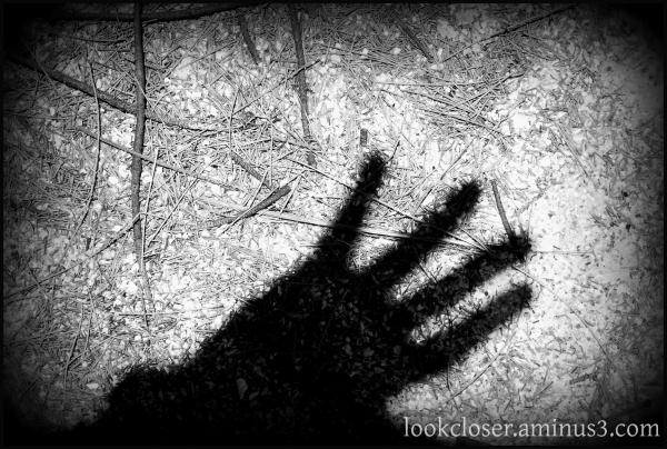bw holga shadow beach fingers