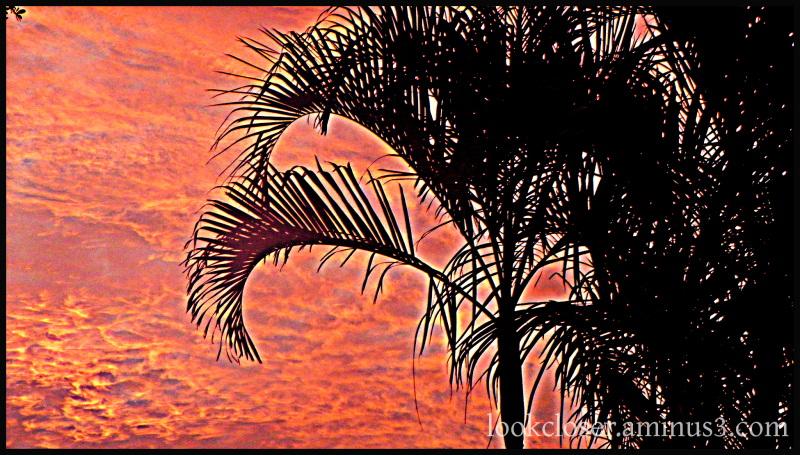 hdr dawn red sky bradenton fl home anniversary