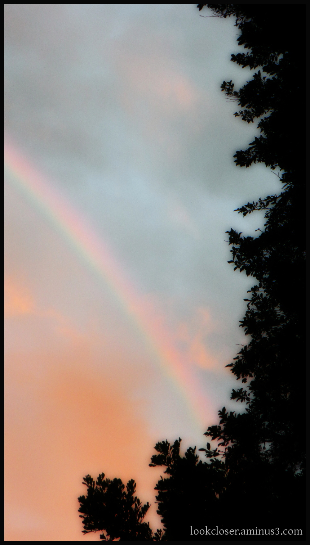 rainbow dawn sky bradenton fl home orton