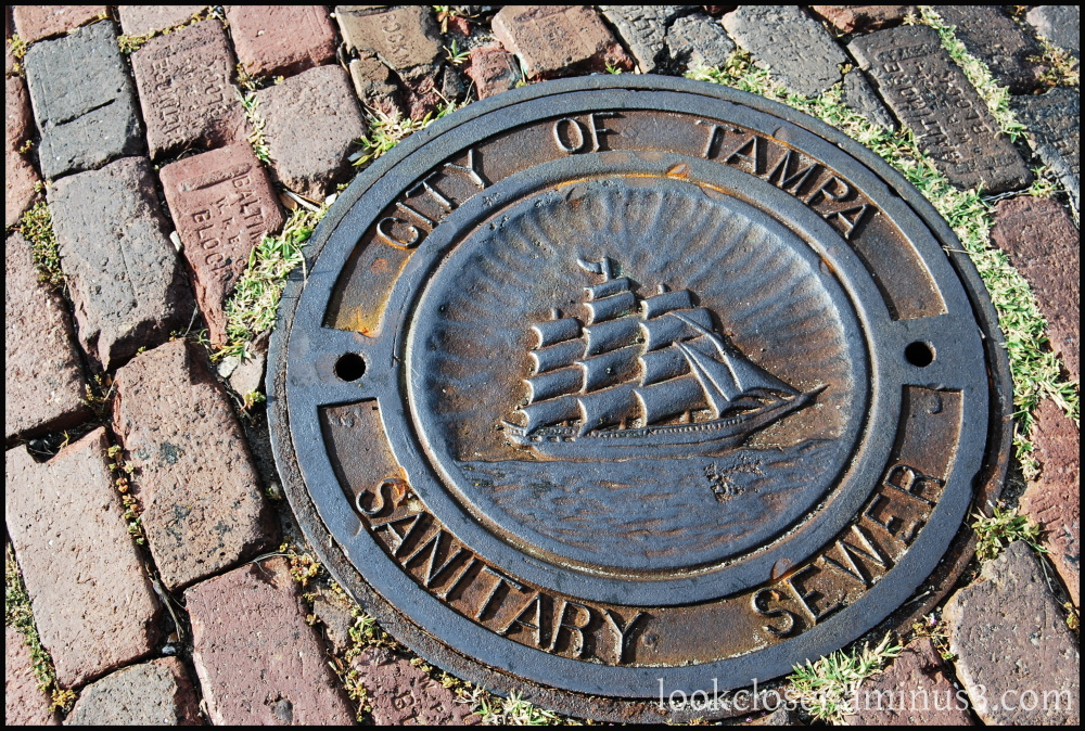 storm drain sewer cover tampa