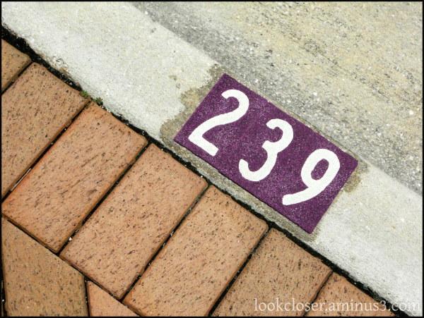 three numbers street bricks purple