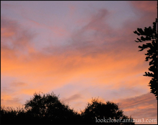 skyscape sunset bradenton fl pastels