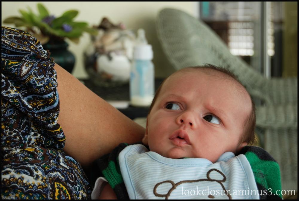 Atticus grandson