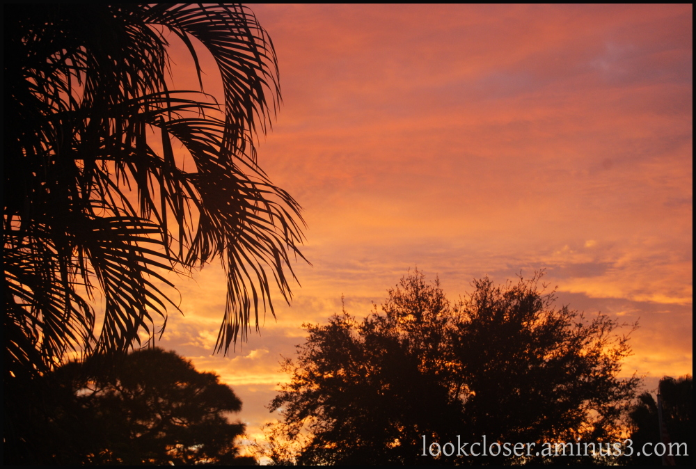 sunrise Bradenton home