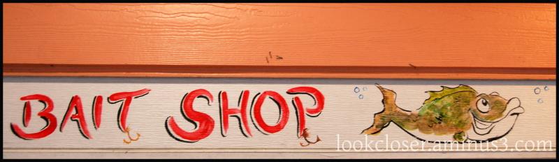 bait shop fish art annamaria