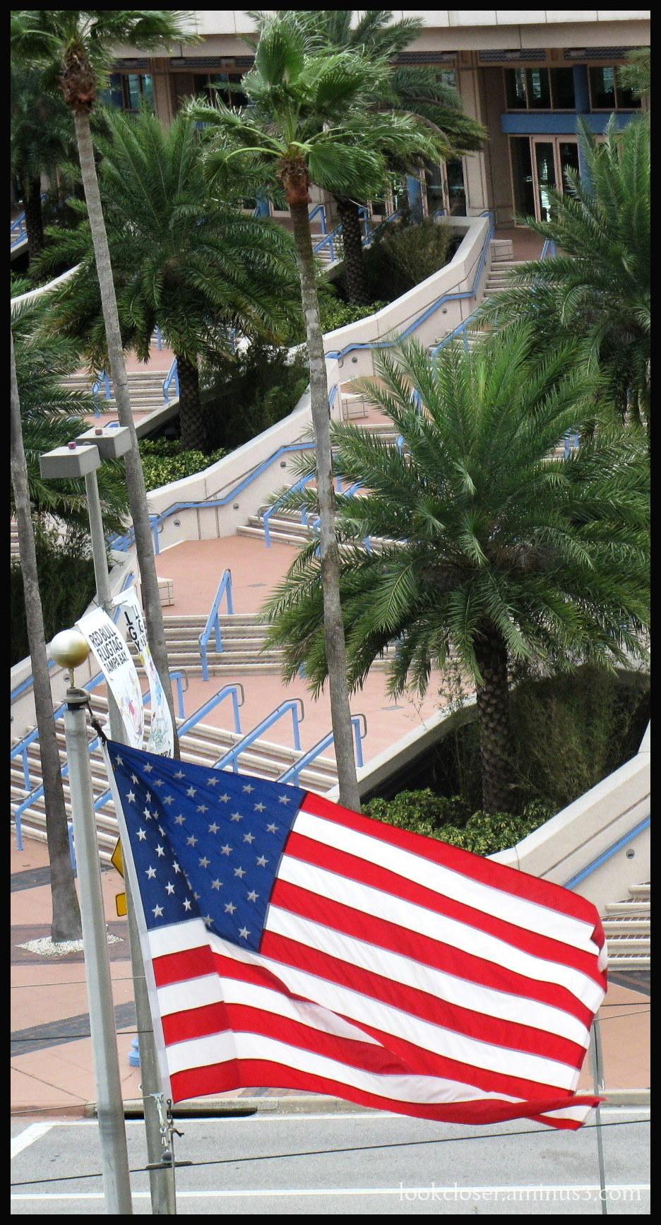 flag palms florida election