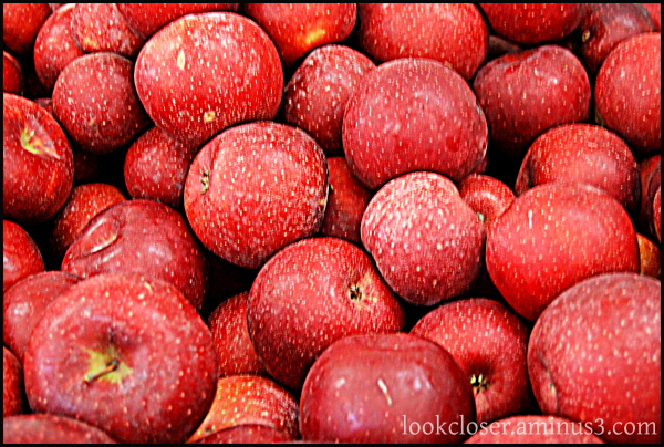red apples hdr