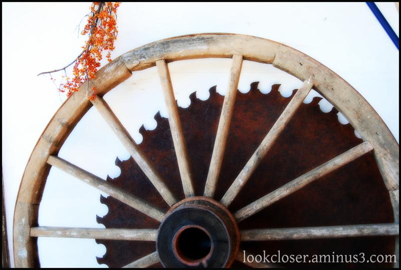 wheel saw blade orton