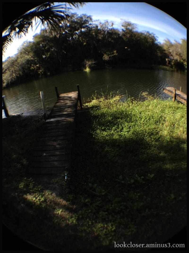 myakka river fl fisheye