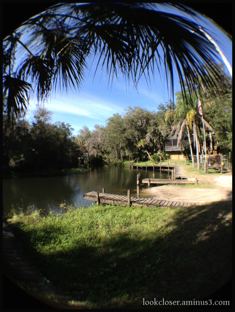 lingerlodge myakka river fisheye