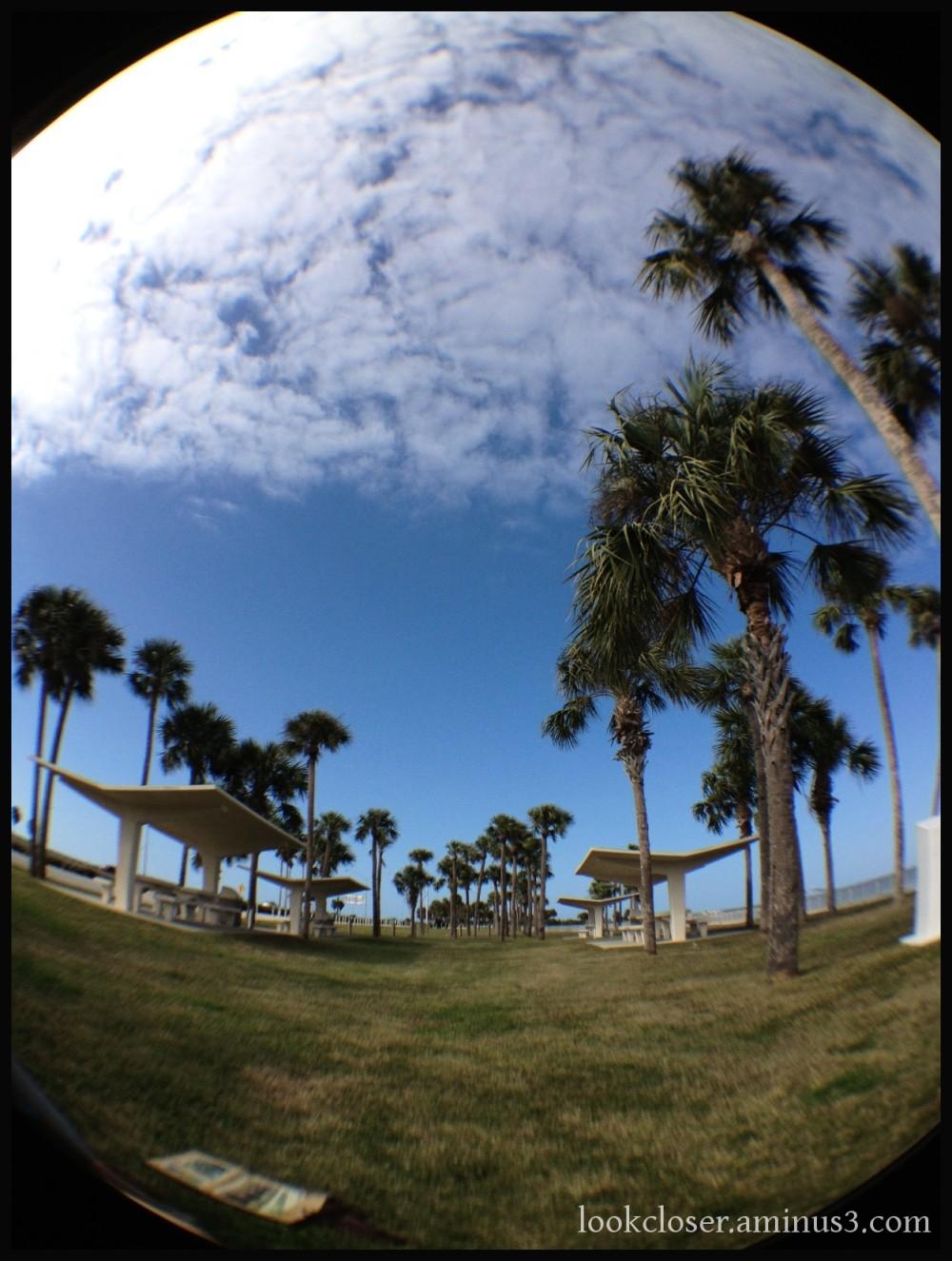 rest stop fisheye blue sky palms clouds