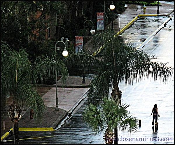 tampa streetscape walker alone rain wet