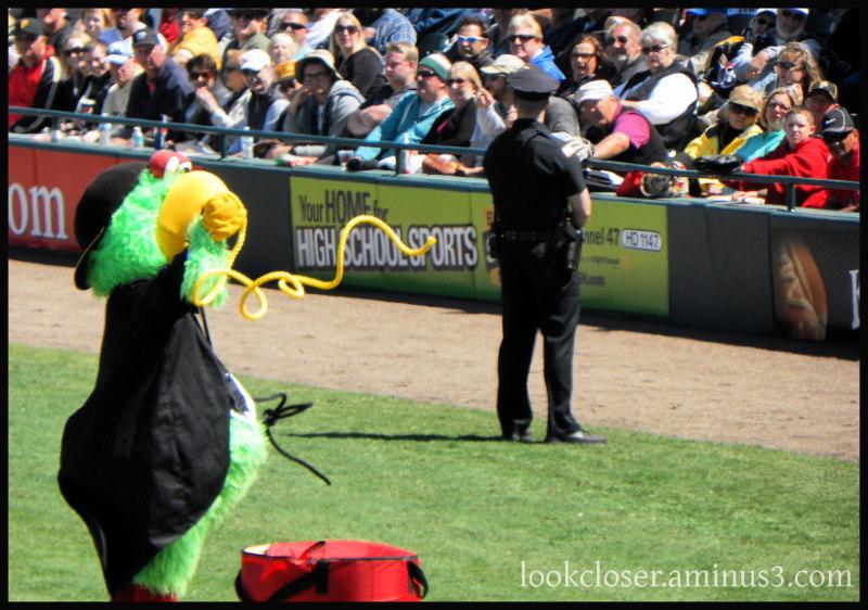 spring game baseball pirates mascot
