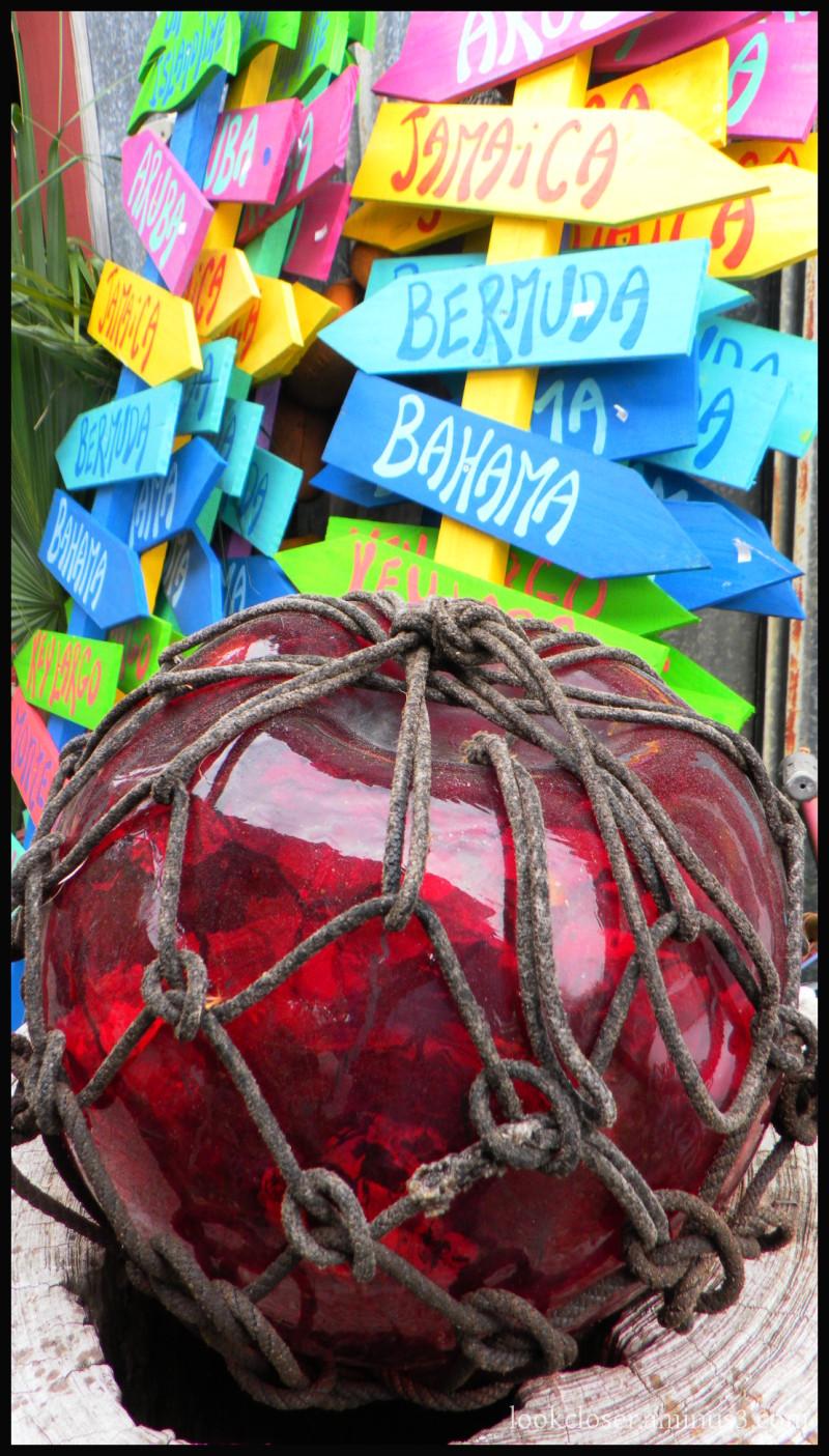 red globe net signs tropics