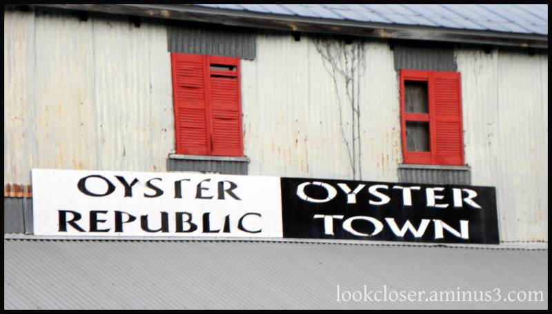 red shutters apalachicola shop oyster signs