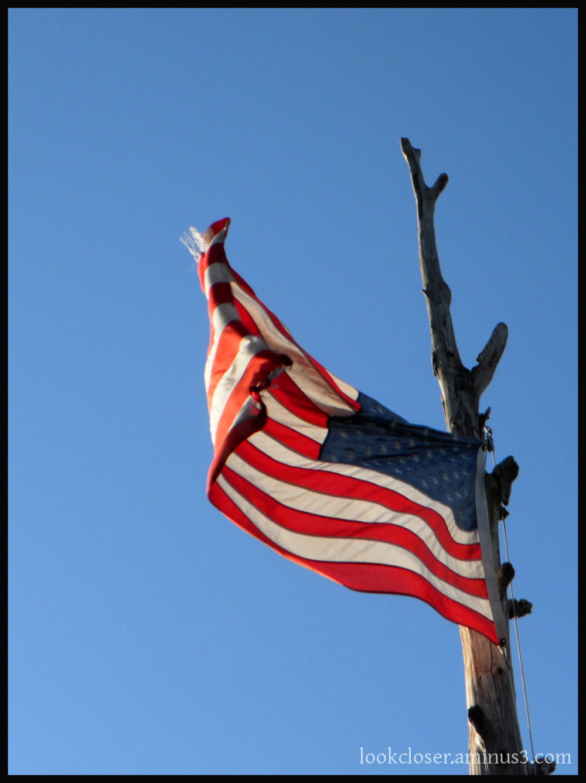 Rustic American flag pole