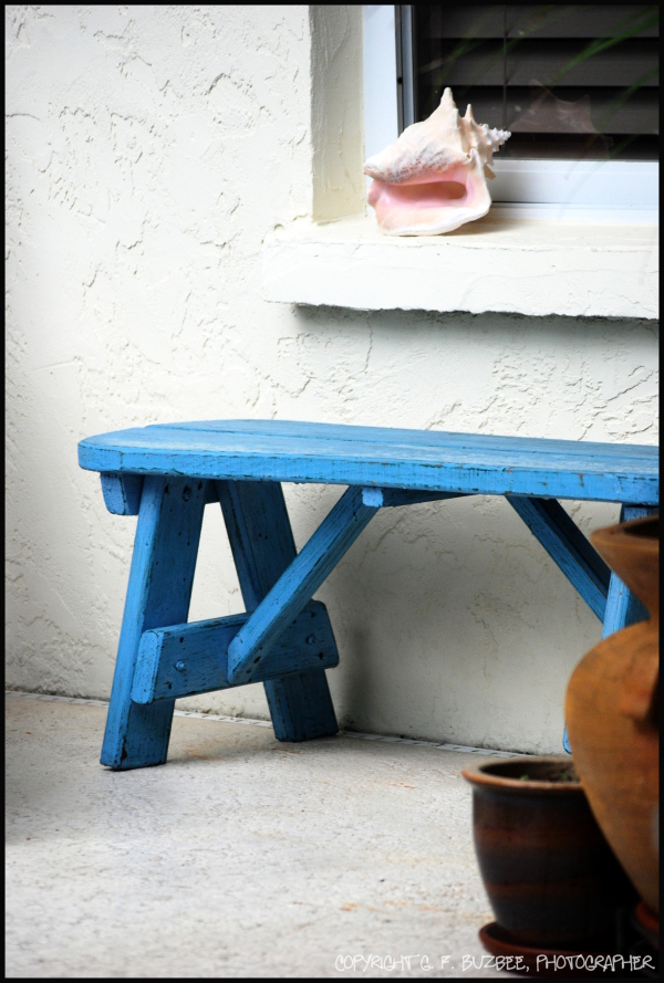 blue bench pink shell