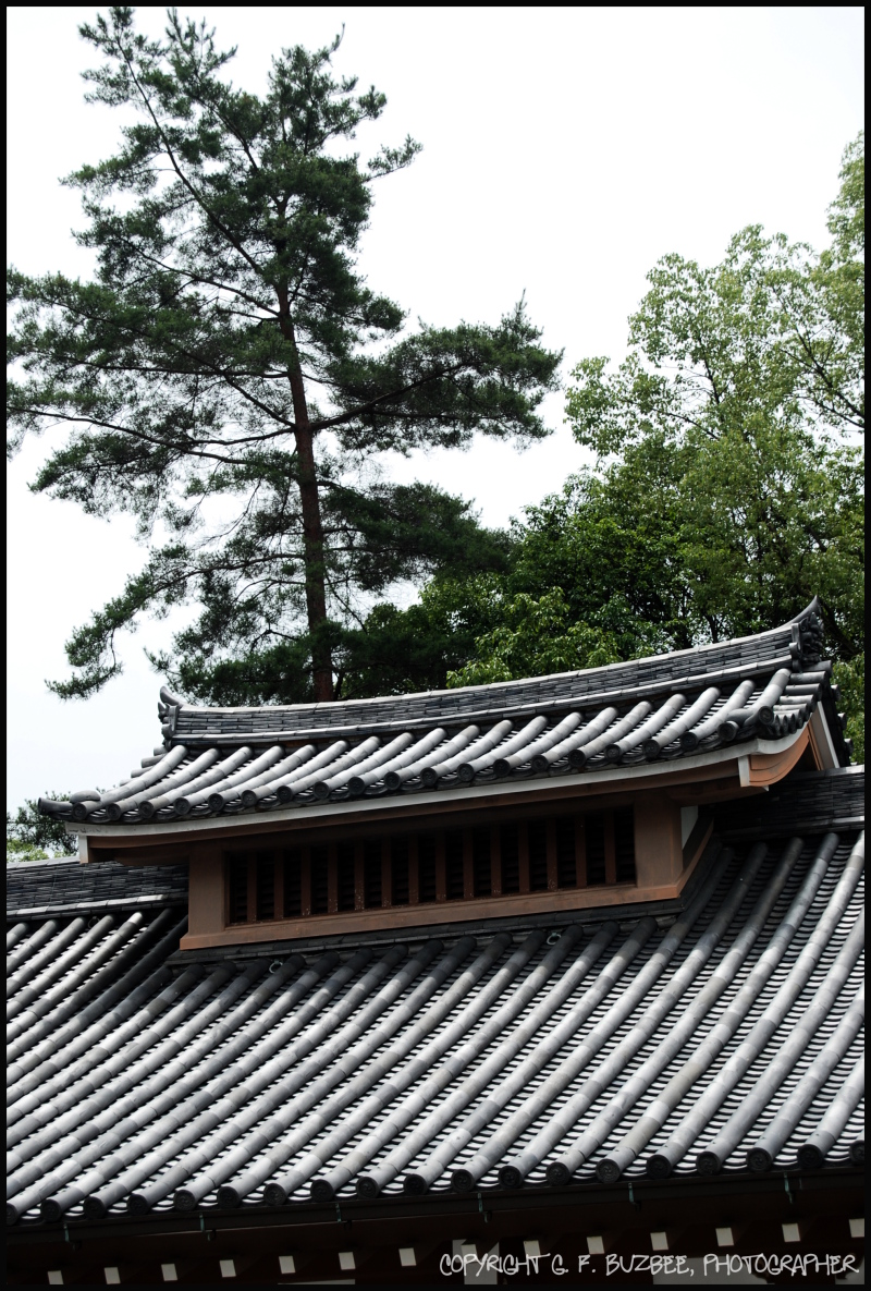 kyoto japan temple roof