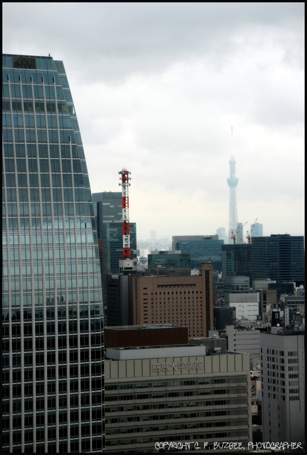 Tokyo Tower View skytree