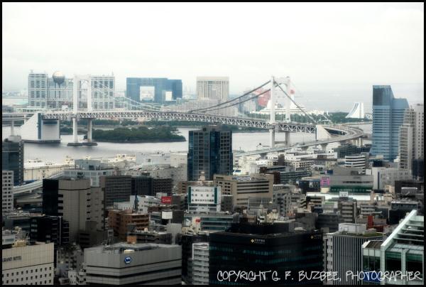 Tokyo Tower view bridge