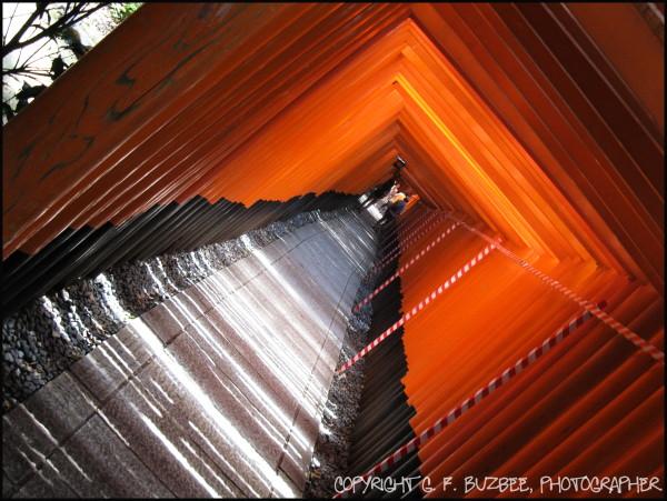 Shrine red gates kyoto japan