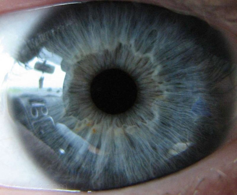 Reflections in my eye!