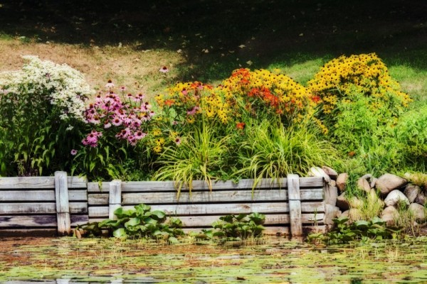 Lakeside Garden