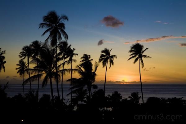 Jalousie Plantation Sunset