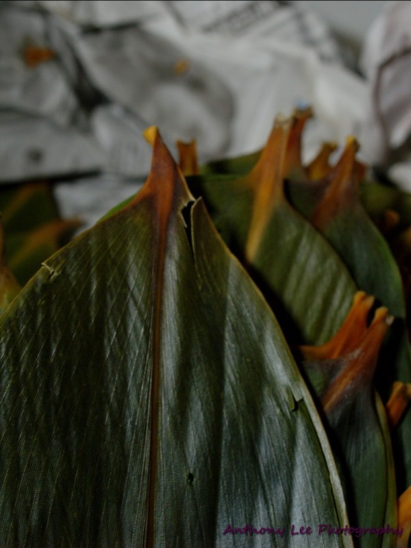 Dumpling leaves wrapper