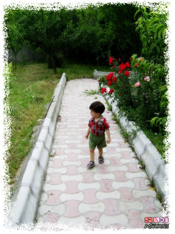 Walking In Garden