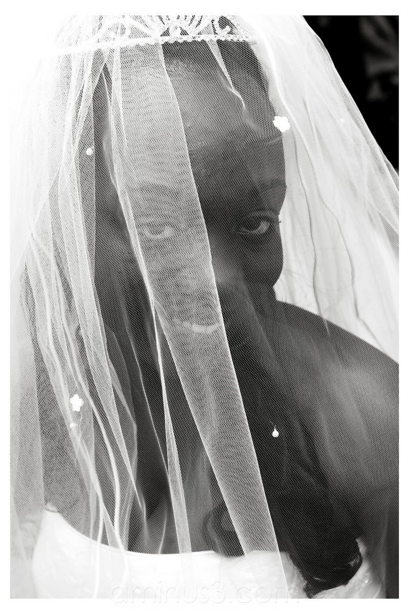 A wedding protrait a Bride