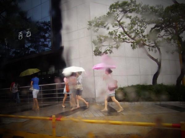 Rain - 장마
