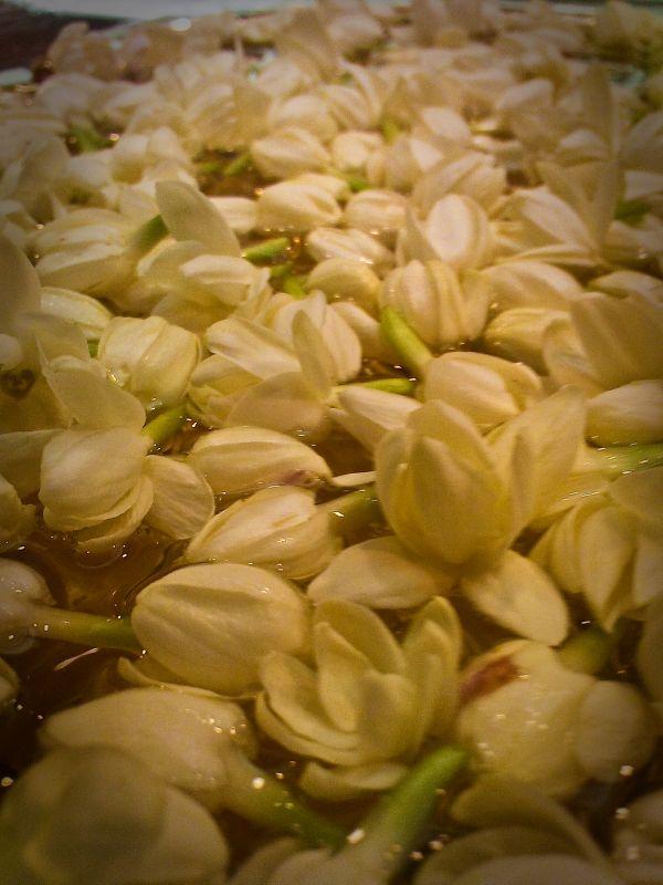 Endless Flowers