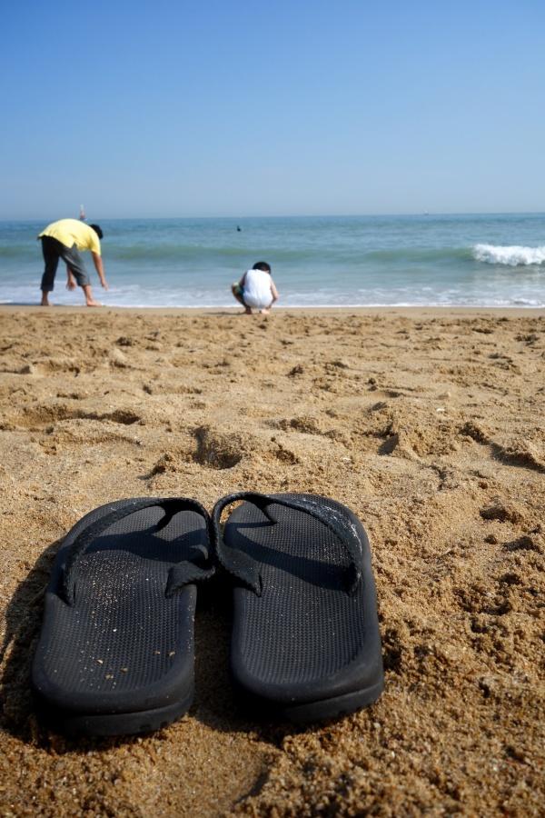 Memoir of Summer #2