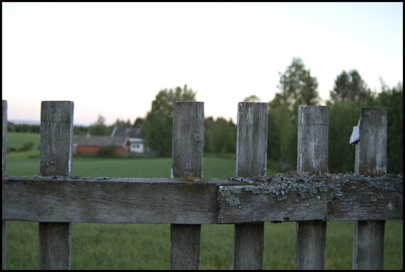 My fence, infront of a field.
