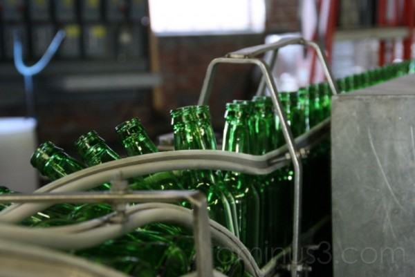 Yuengling beer bottling
