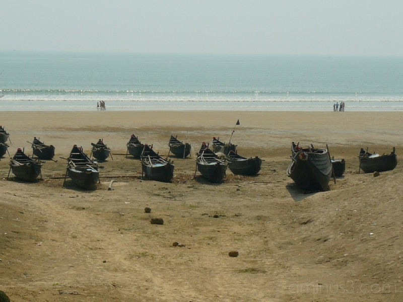 A fishing armada