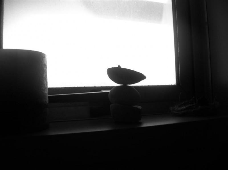 Windowsill arrangement in black & white