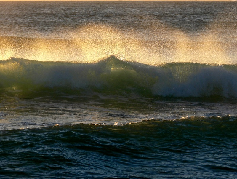 the wave catches and holds the sun