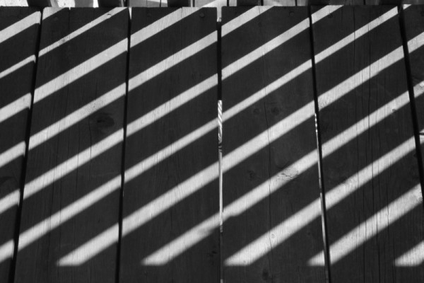 black and white shadows