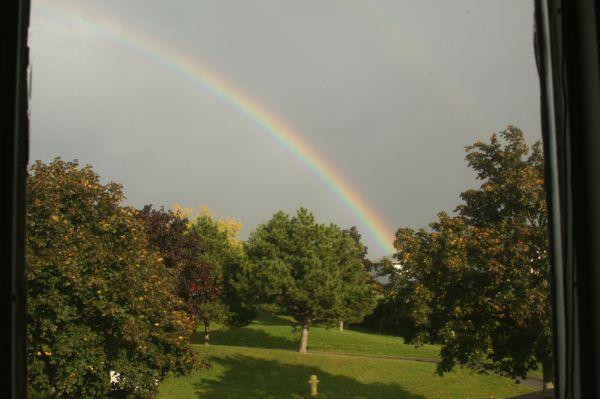 Rainbow through the Window