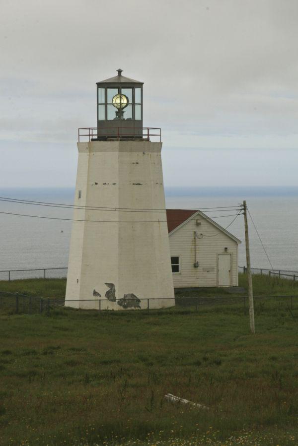 Lighthouse at Cape St. Mary's Seabird Sanctuary