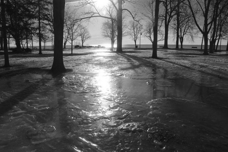 Icy Park
