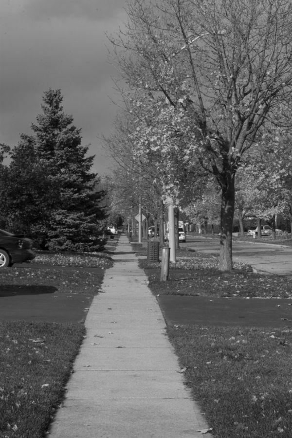 Sidewalk to Nowhere