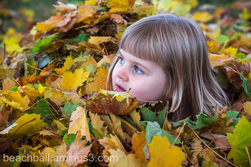 Up To Her Neck in Leaves