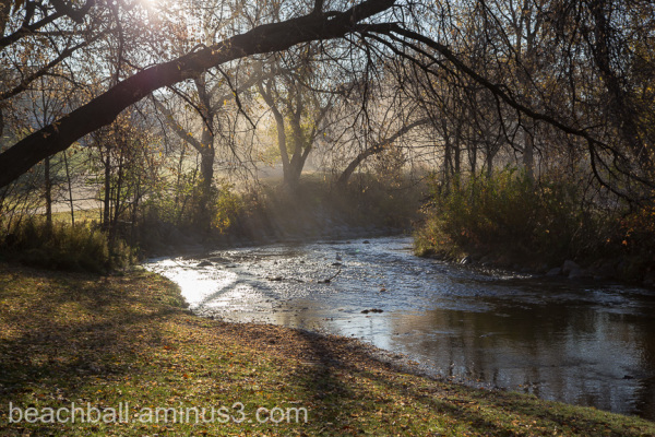 Creek in Misty Morning Light