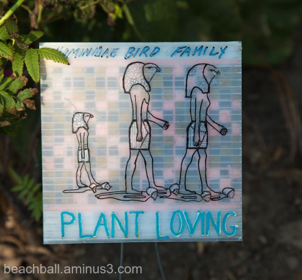 Plant Loving